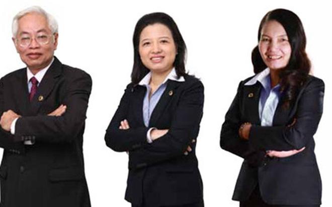 Hồ sơ dàn lãnh đạo bị Bộ Công an bắt cùng Trần Phương Bình