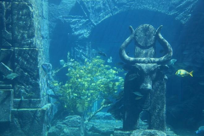 Phát hiện chấn động: Tìm thấy 4 kim tự tháp khổng lồ dưới đáy biển tam giác quỷ Bermuda - Ảnh 3.