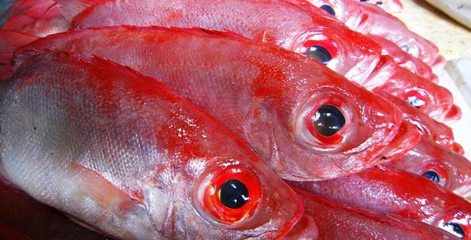 Chăm sóc sức khoẻ: Hướng dẫn chọn hải sản an toàn Ca5-1462336128314-88-0-415-640-crop-1462336202645