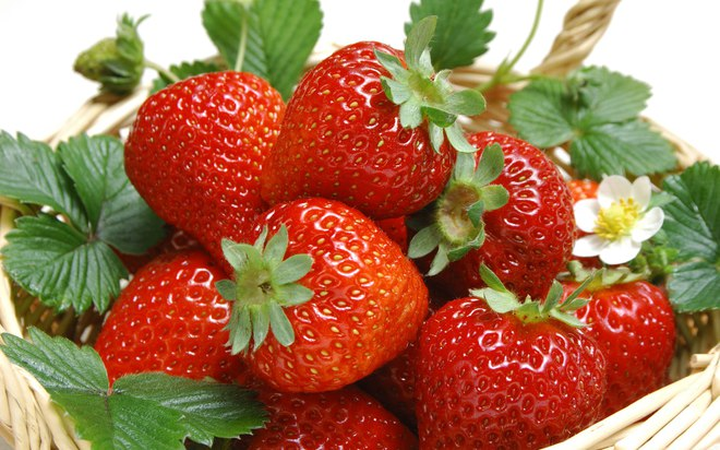 5 trái cây tốt nhất làm tăng hiệu quả chữa trị bệnh ung thư - Ảnh 4.