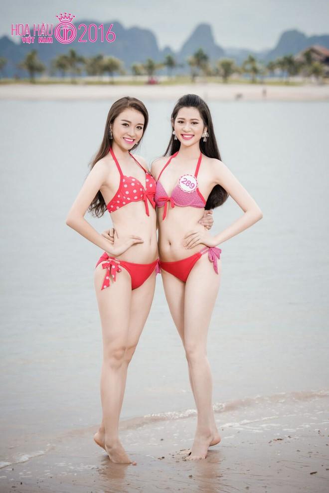 Nóng bỏng ảnh bikini các thí sinh đẹp nhất Hoa hậu VN 2016 - Ảnh 13.