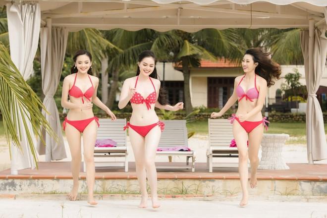 Nóng bỏng ảnh bikini các thí sinh đẹp nhất Hoa hậu VN 2016 - Ảnh 1.