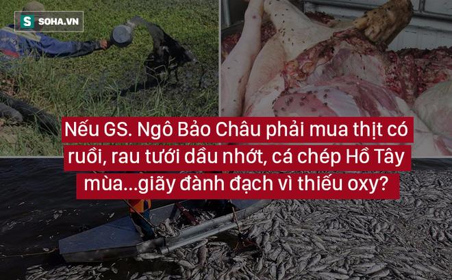 """GS Ngô Bảo Châu sẽ không có giải Field nếu phải xài rau tưới dầu nhớt, cá Hồ Tây """"thiếu oxy"""""""