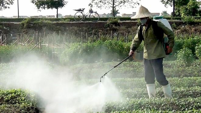 Chuyên gia chỉ rõ 3 nguồn chất độc khiến thực phẩm có thể gây ung thư - Ảnh 2.