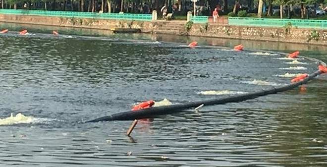 Lượng oxy hòa tan trong nước hồ Tây được cải thiện