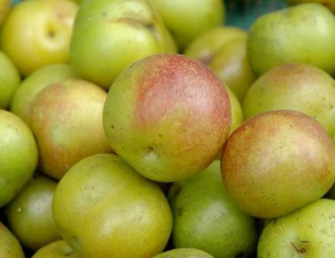 6 trái cây luôn có sẵn ngoài chợ cao tay giảm đường huyết, tốt cho cả người tiểu đường - Ảnh 6.