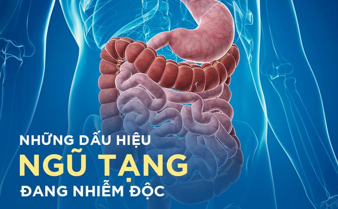Những dấu hiệu cảnh báo cơ thể bị nhiễm độc, hãy xử lý càng sớm càng tốt