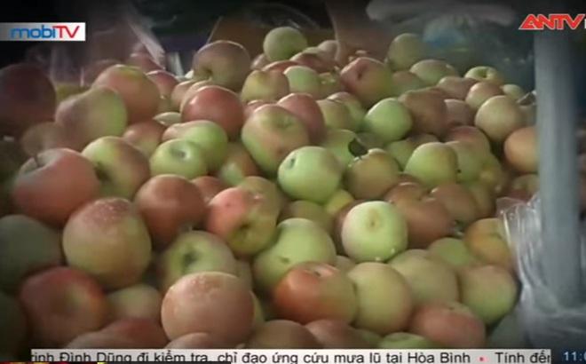 """""""Hé lộ"""" bí mật công nghệ khiến hoa quả nhập từ Trung Quốc về Việt Nam tươi mãi không héo"""