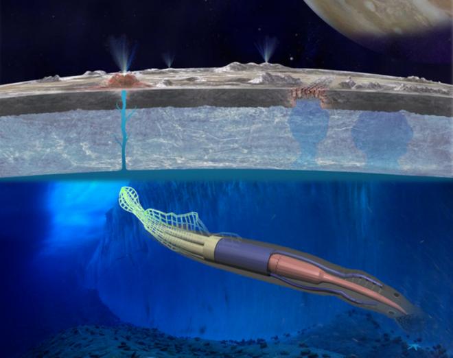 1h sáng 14/4, NASA họp báo công bố phát hiện mới nhất về sự sống ngoài hành tinh - Ảnh 4.