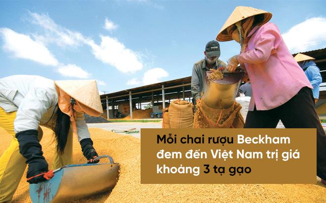 Mang bóng đá, đừng mang rượu bia đến Việt Nam, Ronaldinho! - Ảnh 2.
