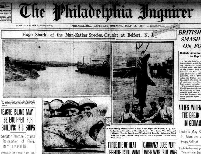 Nỗi sợ cá mập từng bao trùm nước Mỹ: Hai tuần 5 người gặp nạn, chỉ 1 người sống sót - Ảnh 4.