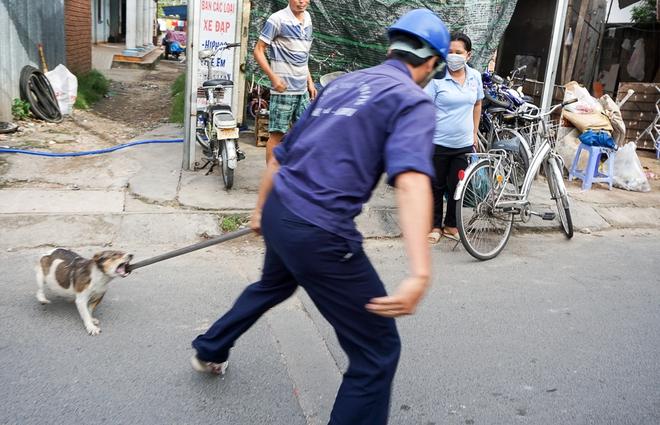 Dẫn chó cưng đi chợ không rọ mõm, người dân bất ngờ khi bị Đội săn bắt chó TP HCM hốt về - Ảnh 4.