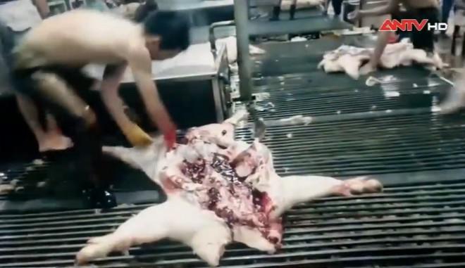 Sự thật về thịt lợn giá rẻ bán tràn lan, vừa rã đông giòi đã bò lổm nhổm - Ảnh 2.