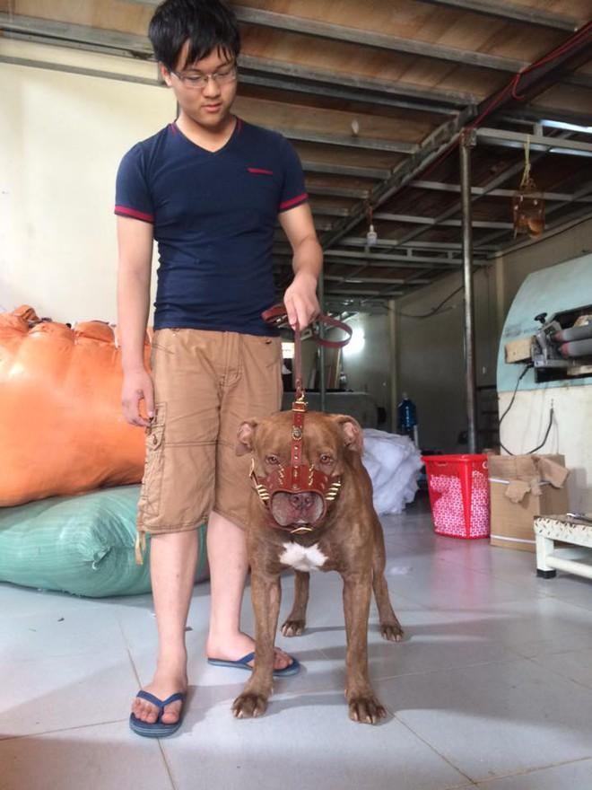 6 thắc mắc về chuyện bắt chó thả rông và lời giải đáp hút nghìn like - ảnh 5