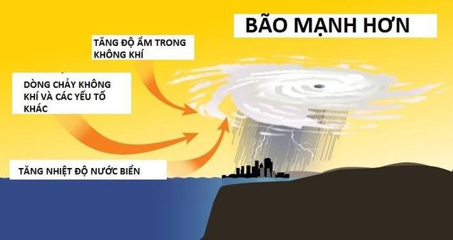 Tại sao bão số 10 đổ bộ Việt Nam lại thần tốc và hung hãn đến vậy? - ảnh 6
