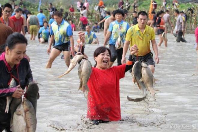 600 người quần thảo dưới đầm lầy, săn bắt, giành giật hơn 3000 con cá  - Ảnh 2.