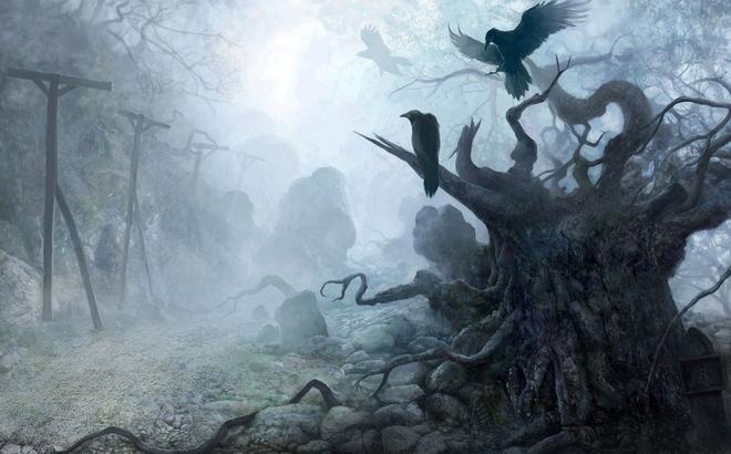 """Bí ẩn loài cây """"thần chết"""" biến mình thành nghĩa địa của loài chim"""