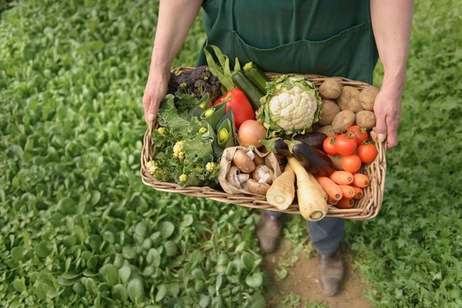 Từ trang trại đến bàn ăn: Không chỉ ở VN, người Pháp cũng rất thèm thực phẩm hữu cơ - Ảnh 3.
