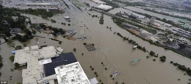 [Ảnh] Bão Harvey biến đường cao tốc Houston thành biển nước, sóng đánh dập dìu - Ảnh 3.
