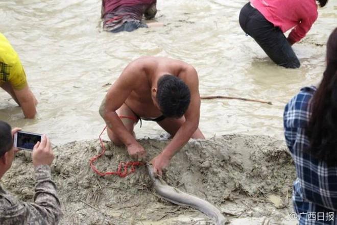 600 người quần thảo dưới đầm lầy, săn bắt, giành giật hơn 3000 con cá  - Ảnh 4.