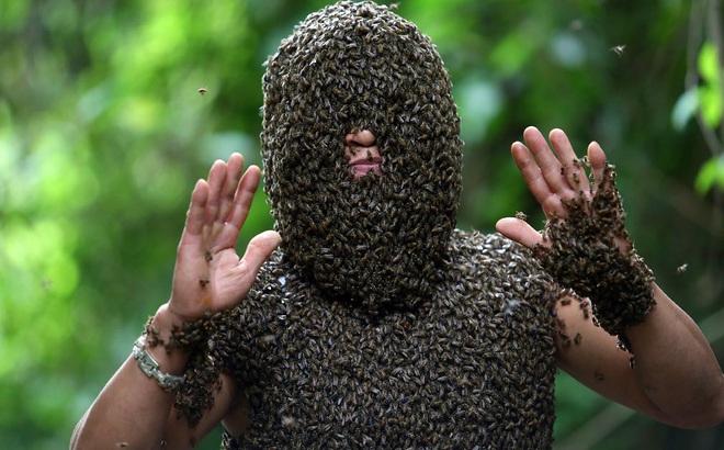 24h qua ảnh: Hàng nghìn con ong đậu kín mặt 'dị nhân' Việt Nam