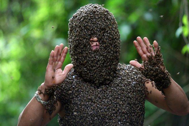 24h qua ảnh: Hàng nghìn con ong đậu kín mặt dị nhân Việt Nam - Ảnh 7.