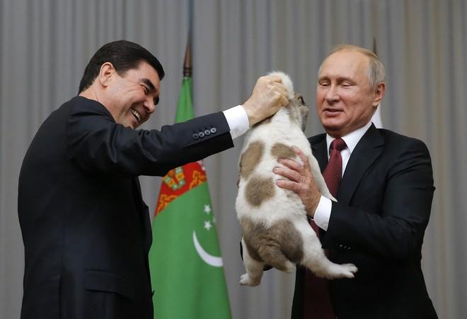 24h qua ảnh: Tổng thống Putin vui mừng khi được tặng chó cưng - Ảnh 6.