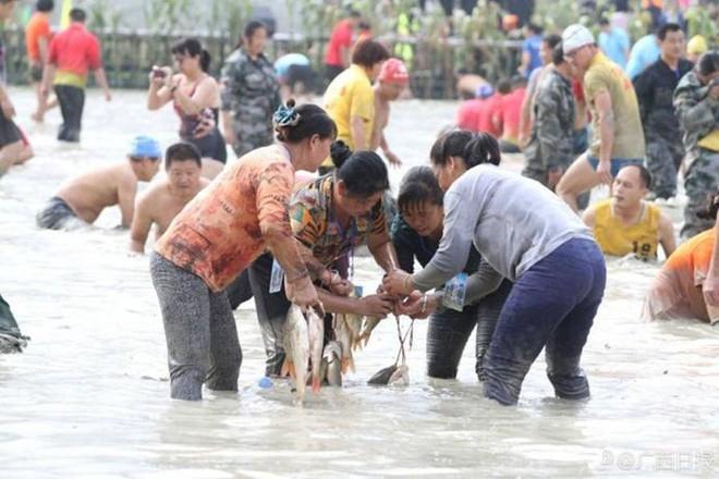 600 người quần thảo dưới đầm lầy, săn bắt, giành giật hơn 3000 con cá  - Ảnh 6.