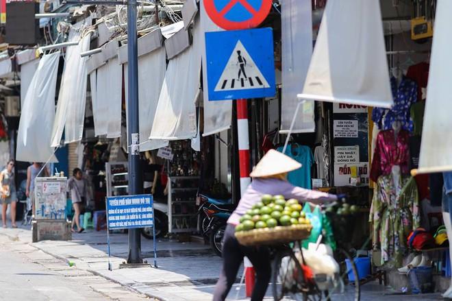 Người Hà Nội mặc bìa carton, hai tay hai ô giữa ngày nắng nóng lịch sử 16