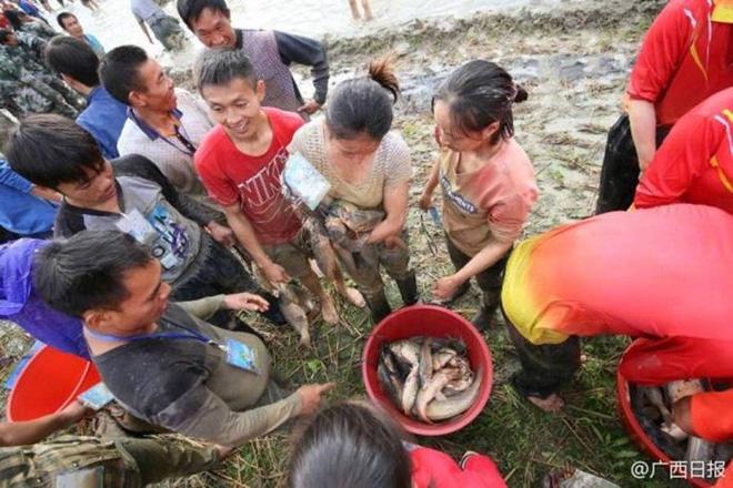 600 người quần thảo dưới đầm lầy, săn bắt, giành giật hơn 3000 con cá  - Ảnh 7.