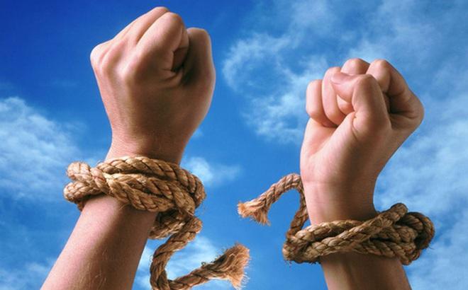 Chuyện châu chấu, trâu và người: Chúng ta đều có một nhà tù vô hình, và chẳng mấy ai dám thoát ra khỏi đó