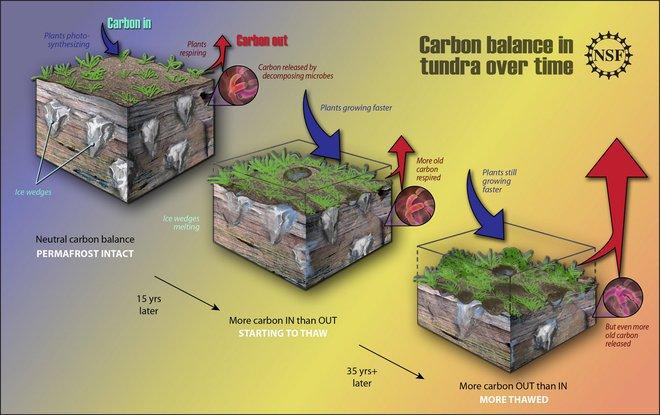 Hiểm họa bùng phát hàng triệu tấn CO2 do nóng lên toàn cầu đáng sợ hơn vũ khí hủy diệt - Ảnh 3.