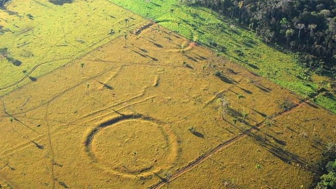 Khoa học giải mã thành công cấu trúc bí ẩn 3.000 năm tuổi trong rừng rậm Amazon - Ảnh 2.