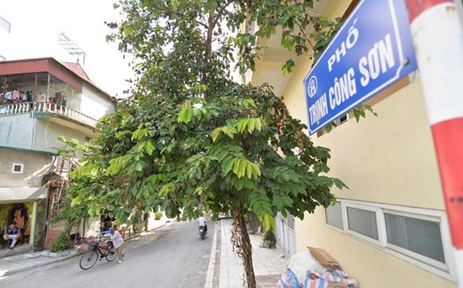 Vì sao phố đi bộ Trịnh Công Sơn hoãn ngày khai mạc
