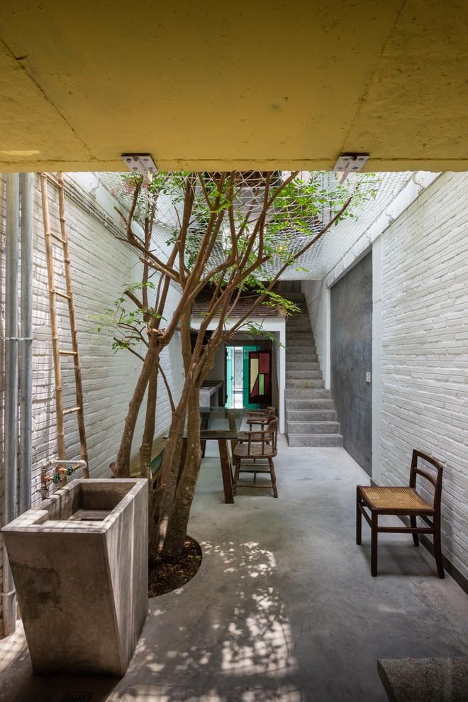 Kiệt tác kiến trúc bên trong ngôi nhà lụp xụp, mặt tiền 3m ở Sài Gòn - Ảnh 3.
