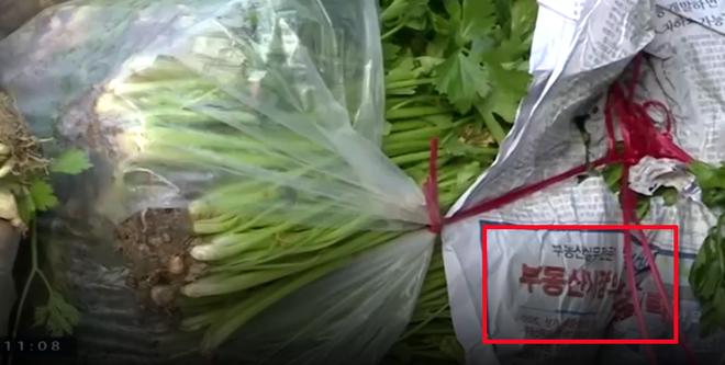 Lòng lợn khuấy đảo Hà Nội - Phú Yên, rau Trung Quốc tấn công ồ ạt - Ảnh 7.