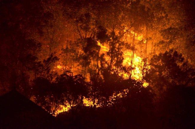 Hà Nội: Hơn 2000 người trắng đêm khống chế vụ cháy rừng lớn nhất, lâu nhất trong lịch sử - Ảnh 2.