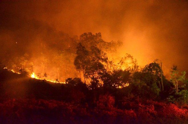 Hà Nội: Hơn 2000 người trắng đêm khống chế vụ cháy rừng lớn nhất, lâu nhất trong lịch sử - Ảnh 3.