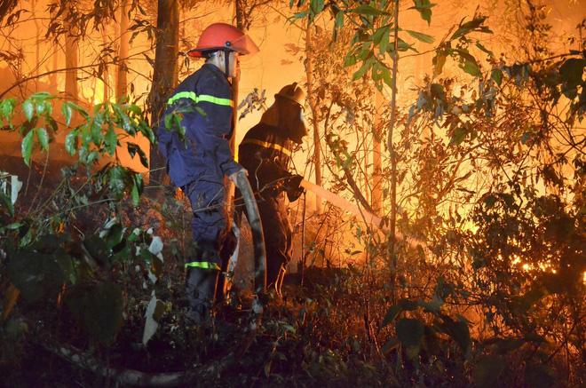 Hà Nội: Hơn 2000 người trắng đêm khống chế vụ cháy rừng lớn nhất, lâu nhất trong lịch sử - Ảnh 6.