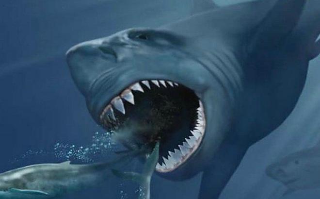 Khoa học đã tìm ra lý do tuyệt chủng của Megalodon, loài cá mập lớn nhất ...
