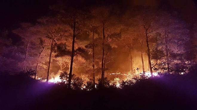 Hà Nội: Hơn 2000 người trắng đêm khống chế vụ cháy rừng lớn nhất, lâu nhất trong lịch sử - Ảnh 10.