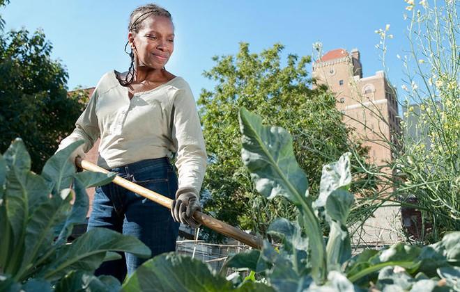 7 lý do khiến những người làm vườn hạnh phúc hơn nhiều nghề khác - Ảnh 4.