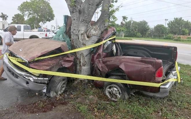 Bão Irma gây tai nạn thương tâm đầu tiên ở Florida: Xe hơi mất lái, quấn chặt vào gốc cây