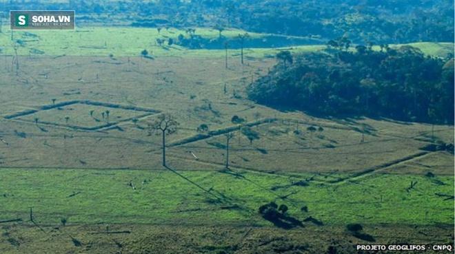 Khoa học giải mã thành công cấu trúc bí ẩn 3.000 năm tuổi trong rừng rậm Amazon - Ảnh 1.