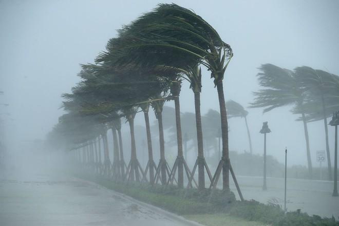 Siêu bão quái vật Irma tấn công dữ dội, Florida chới với trong biển nước - Ảnh 7.