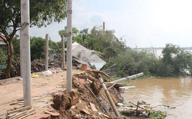 Sạt lở làm 4 căn nhà sụp xuống sông Cổ Chiên