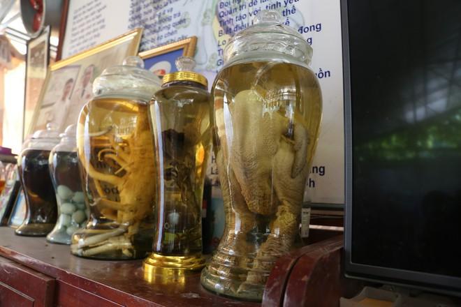 Năm 2016, ông Lê Xuân Vết (79 tuổi, Thành Công, Khoái Châu, Hưng Yên) quyết định ngâm rượu hai con gà Đông Tảo, mỗi con nặng trên 6kg, tuổi đời 6 năm, được định giá 60 triệu đồng/ 1 con.