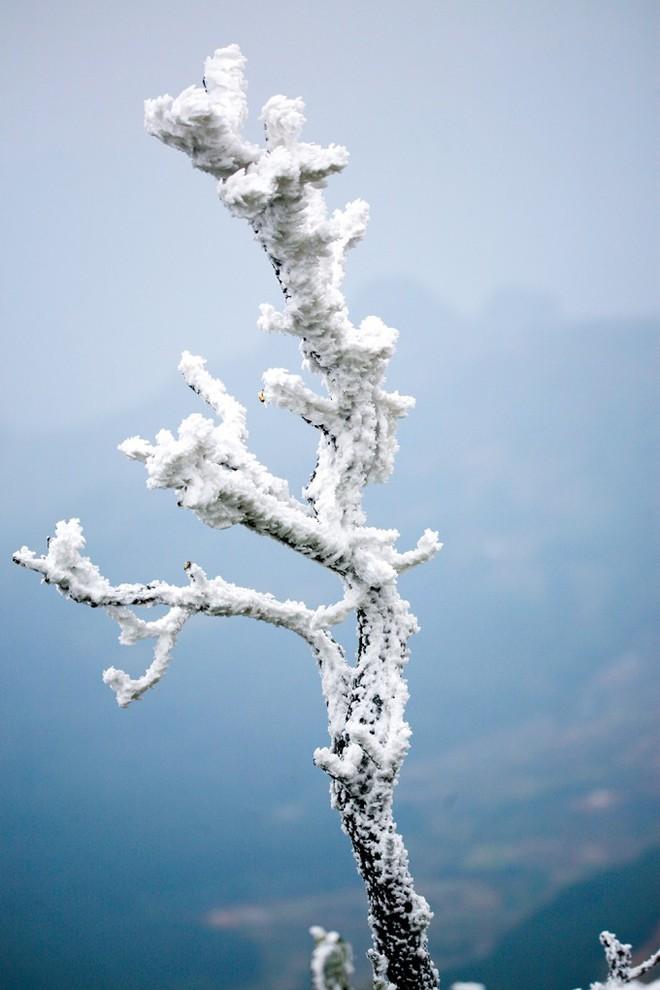 Bạn đã biết 4 thiên đường tuyết trắng ngay tại Việt Nam chưa? - Ảnh 5.