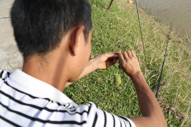 Ảnh: Hàng trăm cần thủ kiếm bộn cá trên dòng sông lũ ở Hà Nội - Ảnh 4.