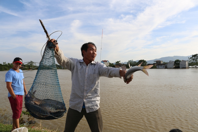 Ảnh: Hàng trăm cần thủ kiếm bộn cá trên dòng sông lũ ở Hà Nội - Ảnh 8.